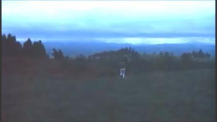 Scena finale di Qualcuno Volò sul Nido del Cuculo. Brodmen si allontana nel bosco.